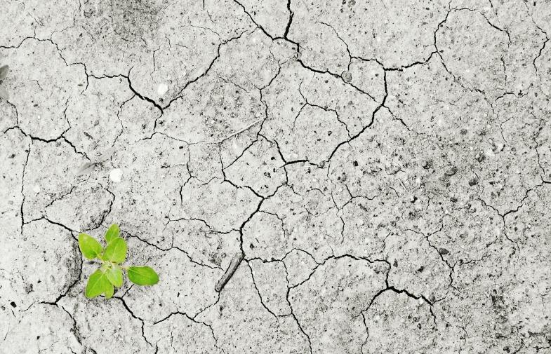 reconnaissance catastrophe naturelle / sécheresse 2017