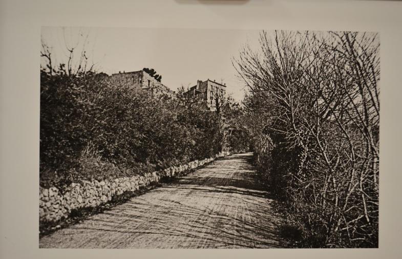 ça s'est passé / expo «un siècle de route Cezanne»