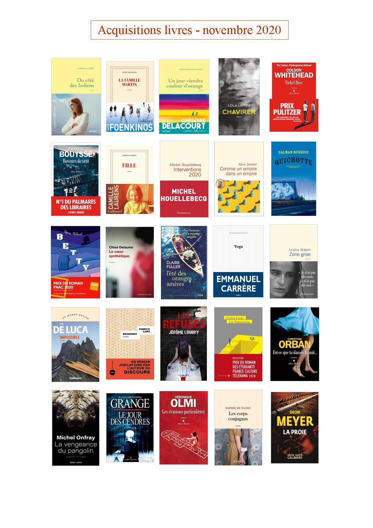 acquisitions livres novembre 2020a